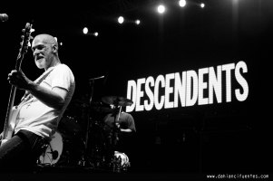 descendents-5614